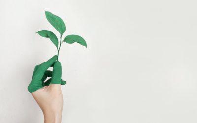 Ci vuole poco a dire sostenibile: starting kit per cogliere l'attimo